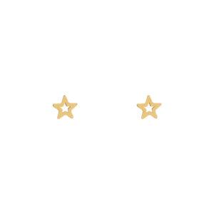 Stud oorbellen open ster